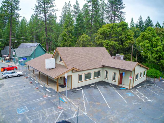 20153-20171 State Highway 88, Pine Grove, CA 95665 (MLS #19035020) :: eXp Realty - Tom Daves