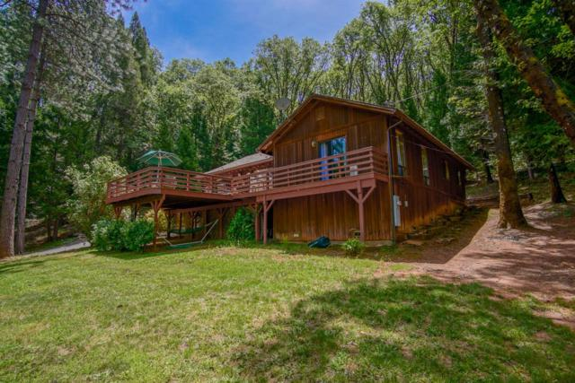 11665 Northern Lights Drive, Grass Valley, CA 95949 (MLS #19035039) :: eXp Realty - Tom Daves