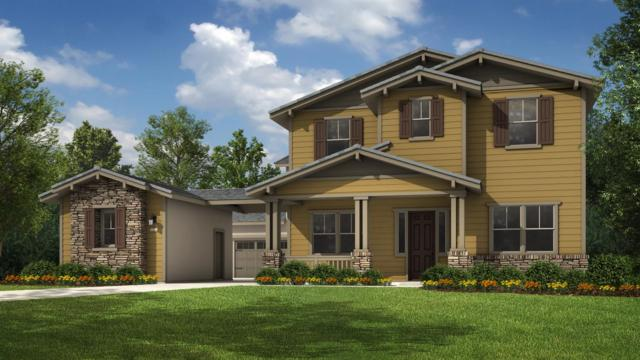 9997 Dona Neely Way, Elk Grove, CA 95757 (MLS #19035081) :: Keller Williams Realty
