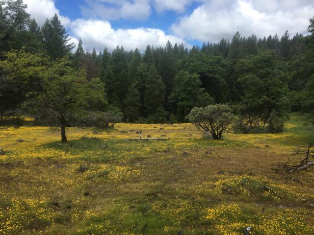0 Arundel, Pollock Pines, CA 95726 (MLS #19035104) :: eXp Realty - Tom Daves