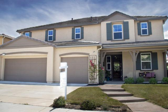 2405 Sanders Lane, Fairfield, CA 94533 (MLS #19035130) :: REMAX Executive