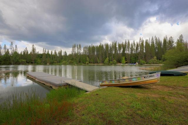 17271 Lake Vera Purdon Road, Nevada City, CA 95959 (MLS #19035227) :: The Merlino Home Team