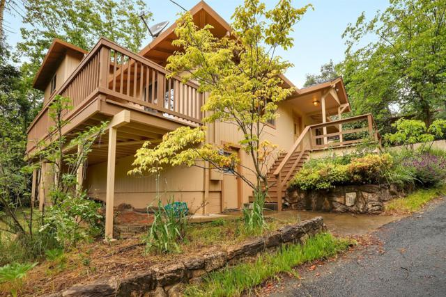 1091 Cindy Court, Placerville, CA 95667 (MLS #19035388) :: eXp Realty - Tom Daves
