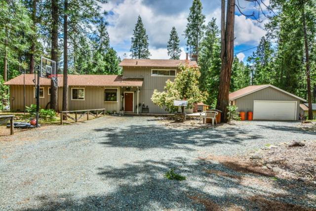 26182 N Oxbow Road, Pioneer, CA 95666 (MLS #19035424) :: eXp Realty - Tom Daves