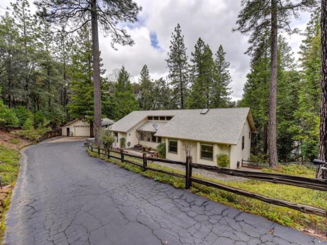 22861 Rocky Lane, Pioneer, CA 95666 (MLS #19035434) :: eXp Realty - Tom Daves