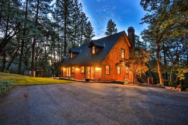 1175 Grange Road, Meadow Vista, CA 95722 (MLS #19035622) :: The Merlino Home Team