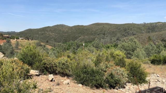 1700 Hickok Road, El Dorado Hills, CA 95762 (MLS #19035628) :: eXp Realty - Tom Daves