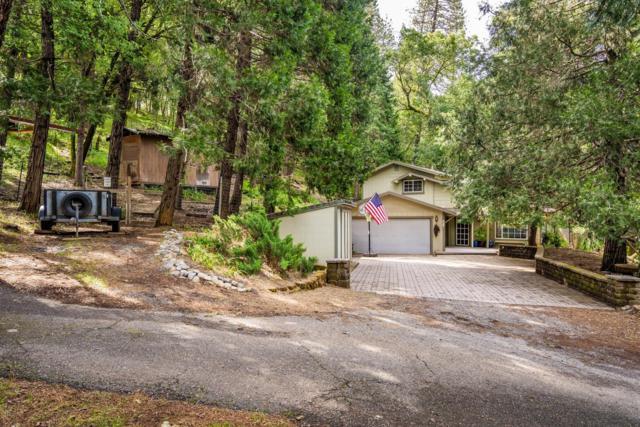 1670 Combie Road, Meadow Vista, CA 95722 (MLS #19035755) :: The Merlino Home Team