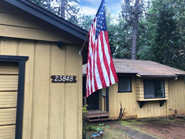 23848 Meadow Crest Drive, Pioneer, CA 95666 (MLS #19035805) :: eXp Realty - Tom Daves