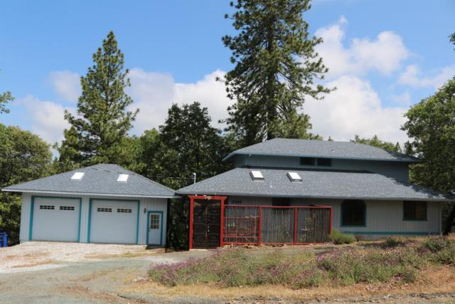 17555 Tanyard Hill West, Pine Grove, CA 95665 (MLS #19035814) :: eXp Realty - Tom Daves