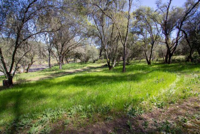 0 Jacobs Creek, Lotus, CA 95651 (MLS #19035902) :: eXp Realty - Tom Daves
