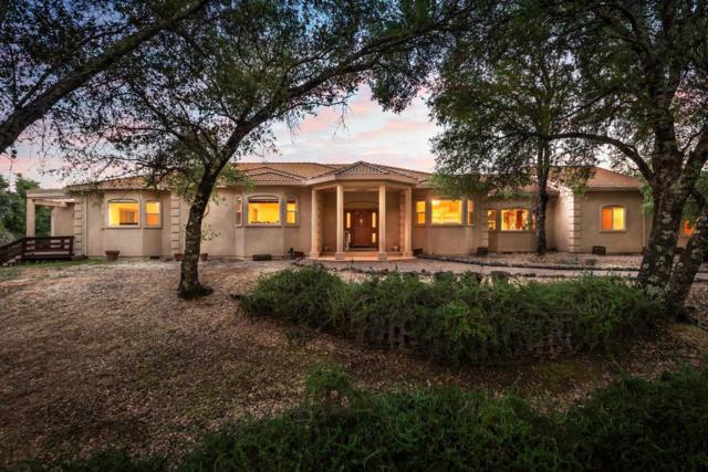 3716 Murphy Ranch Road, Placerville, CA 95667 (MLS #19036790) :: Keller Williams - Rachel Adams Group