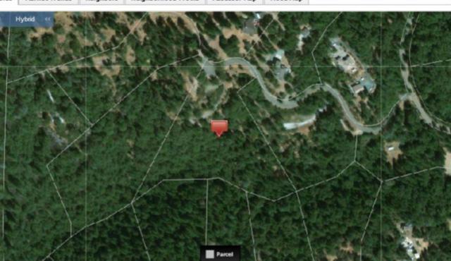 0-0 Wild Life Trail, Fiddletown, CA 95629 (MLS #19037151) :: Keller Williams - Rachel Adams Group