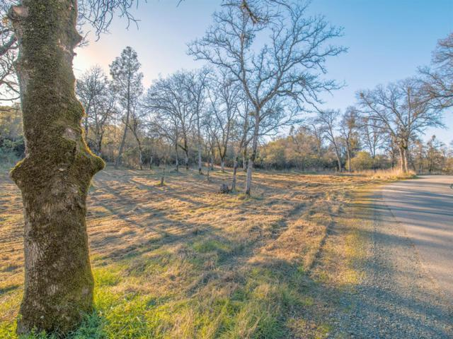 14003 Rudd Road, Penn Valley, CA 95946 (MLS #19038331) :: Dominic Brandon and Team