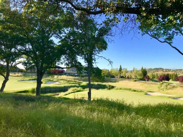 1363 Knolls Dr, Copperopolis, CA 95228 (MLS #19038749) :: The MacDonald Group at PMZ Real Estate
