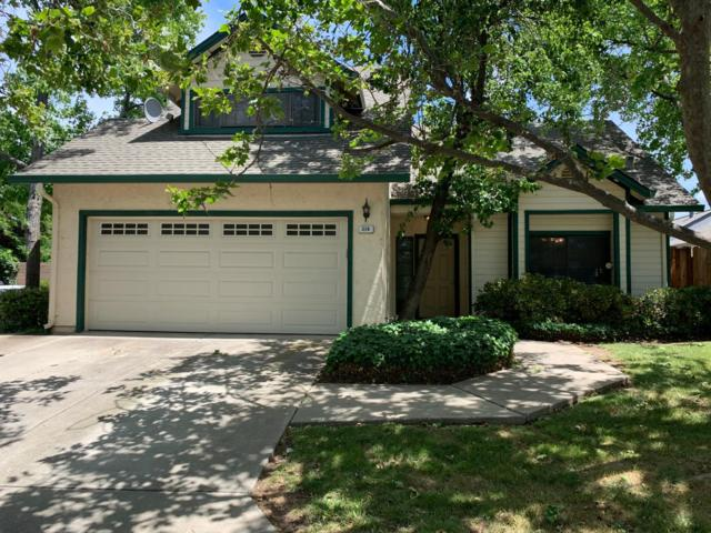 216 Fruitwood Cmn, Brentwood, CA 94513 (MLS #19040009) :: Heidi Phong Real Estate Team