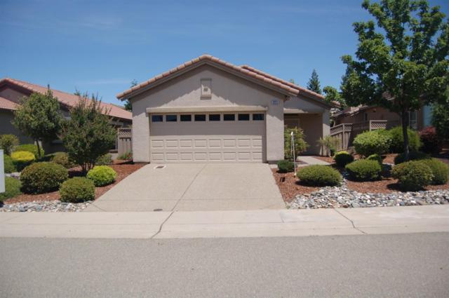 2221 Prairie View Lane, Lincoln, CA 95648 (MLS #19040145) :: REMAX Executive