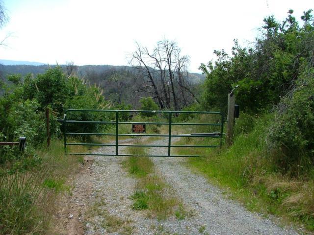 12929 Whiskey Slide Road, Mokelumne Hill, CA 95245 (MLS #19040313) :: Dominic Brandon and Team