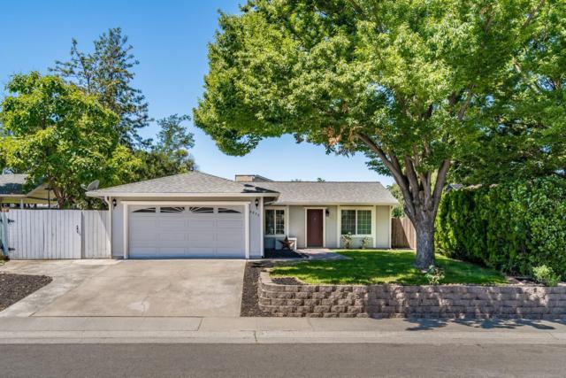 6837 Black Duck Way, Sacramento, CA 95842 (MLS #19041340) :: The MacDonald Group at PMZ Real Estate