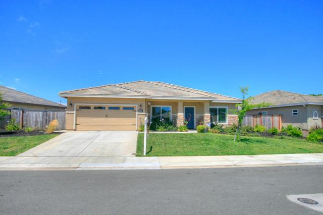 1503 Shakeley, Ione, CA 95640 (MLS #19041813) :: Heidi Phong Real Estate Team