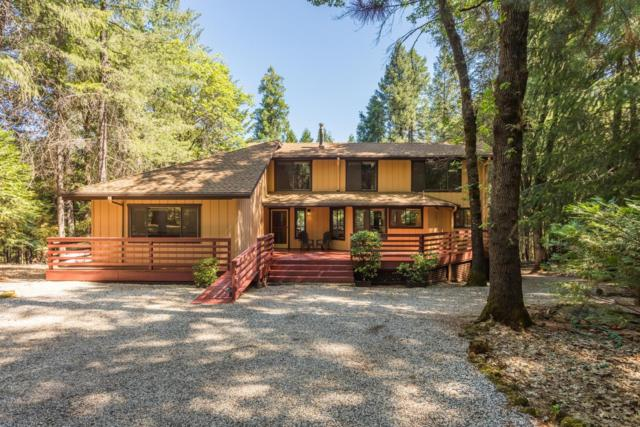 15086 Mosswood Lane, Grass Valley, CA 95945 (MLS #19041904) :: REMAX Executive