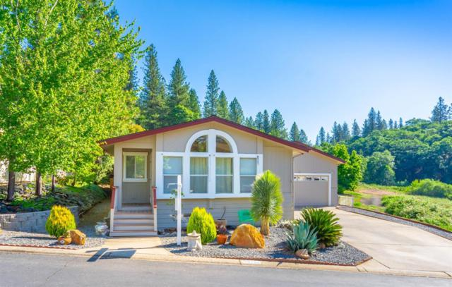 10196 Grant Court, Grass Valley, CA 95949 (MLS #19042169) :: Dominic Brandon and Team