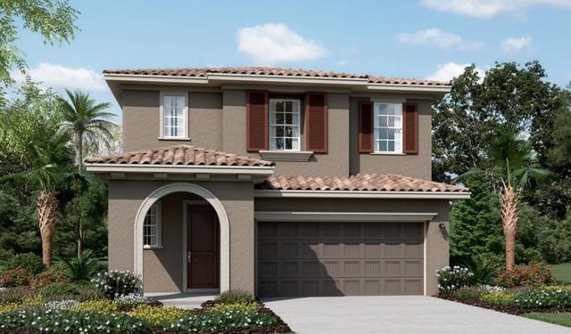 255 E Phelps Drive, Mountain House, CA 95391 (MLS #19042240) :: REMAX Executive