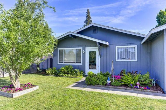 550 Alan Avenue, Woodbridge, CA 95258 (MLS #19042323) :: The Home Team
