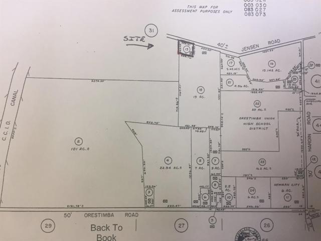 736 Jensen Road, Newman, CA 95360 (MLS #19042396) :: Keller Williams - Rachel Adams Group