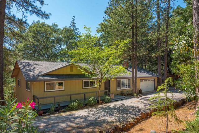11855 Gold Strike Road, Pine Grove, CA 95665 (MLS #19042426) :: Dominic Brandon and Team