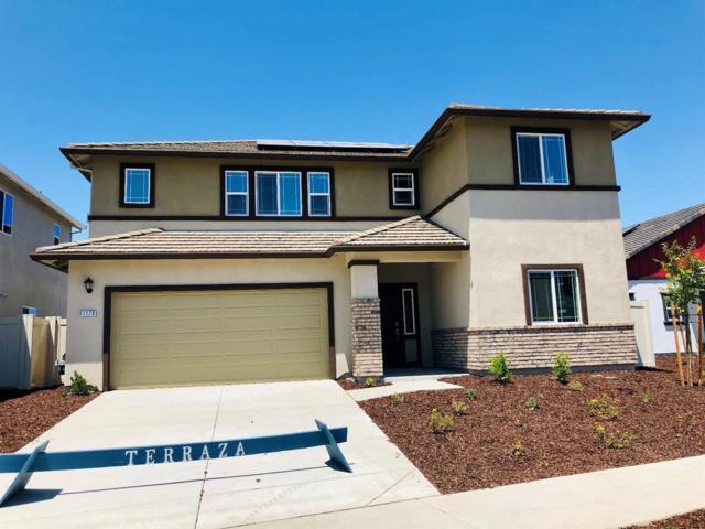 1179 Daisy Ridge Way, Sacramento, CA 95834 (MLS #19042535) :: The MacDonald Group at PMZ Real Estate