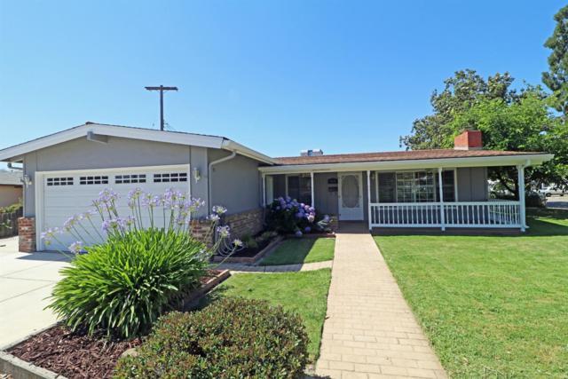 1120 Holly Drive, Lodi, CA 95240 (MLS #19042572) :: Heidi Phong Real Estate Team