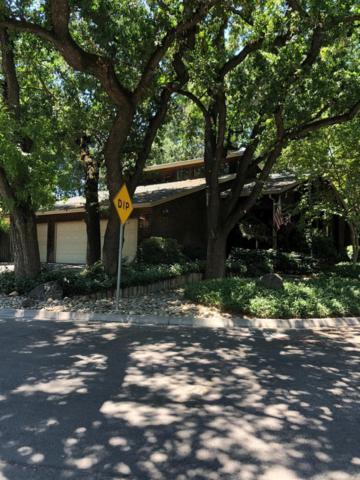 219 N Morton Boulevard, Modesto, CA 95354 (MLS #19042788) :: The MacDonald Group at PMZ Real Estate