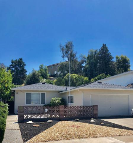 508 Lindley, Antioch, CA 94509 (MLS #19042818) :: The MacDonald Group at PMZ Real Estate