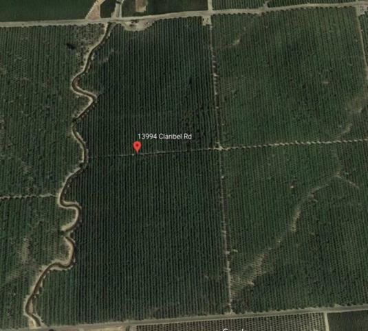 13994 Claribel Road, Waterford, CA 95386 (MLS #19042914) :: Folsom Realty