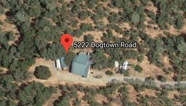 5222 Dogtown Road, Coulterville, CA 95311 (MLS #19042944) :: The MacDonald Group at PMZ Real Estate