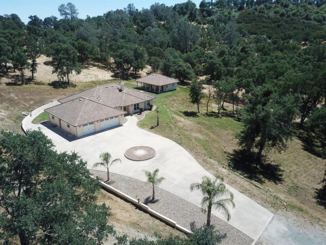 1733 Crown Court, Valley Springs, CA 95252 (MLS #19042962) :: The Home Team
