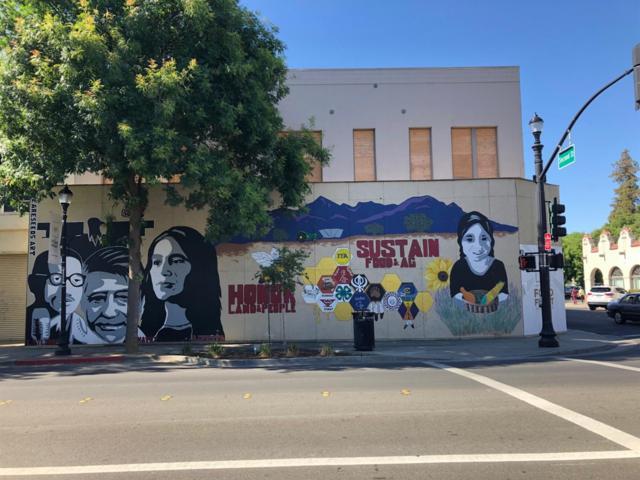 702 Main Street, Woodland, CA 95695 (MLS #19043015) :: Heidi Phong Real Estate Team