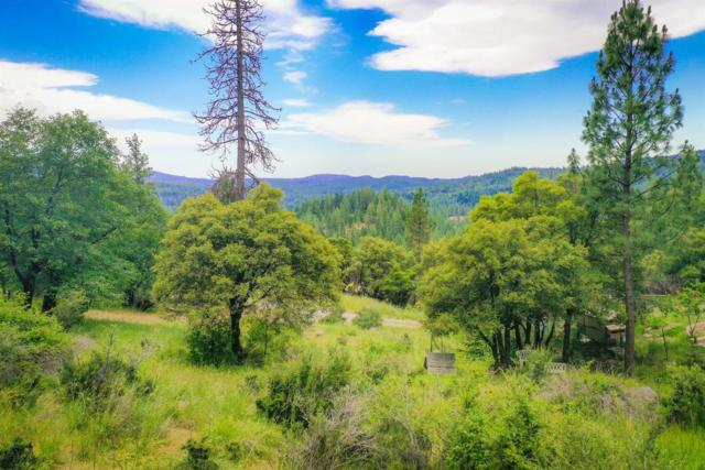 15893 Mountain View Drive, Nevada City, CA 95959 (MLS #19043104) :: REMAX Executive