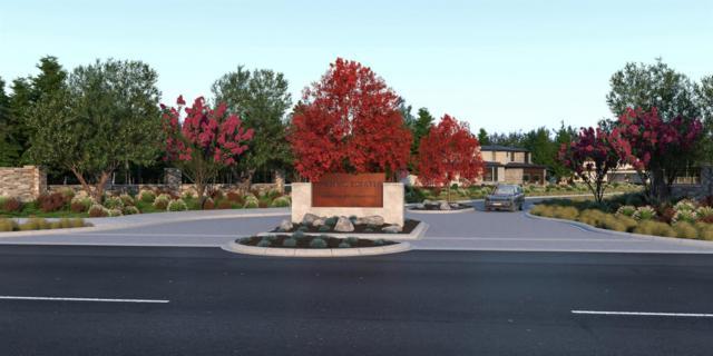 8150 Tesoro Place, Granite Bay, CA 95746 (MLS #19043116) :: Keller Williams - Rachel Adams Group
