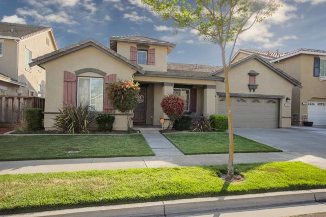 530 Criolla Court, Oakdale, CA 95361 (MLS #19043142) :: The Del Real Group