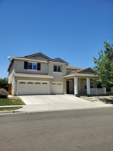 205 Daylily, Patterson, CA 95363 (MLS #19043181) :: The MacDonald Group at PMZ Real Estate