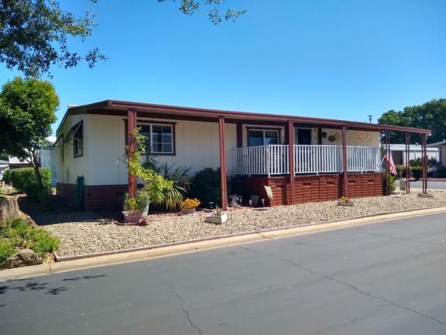 110 Calle Susana, Elk Grove, CA 95624 (MLS #19043404) :: Heidi Phong Real Estate Team