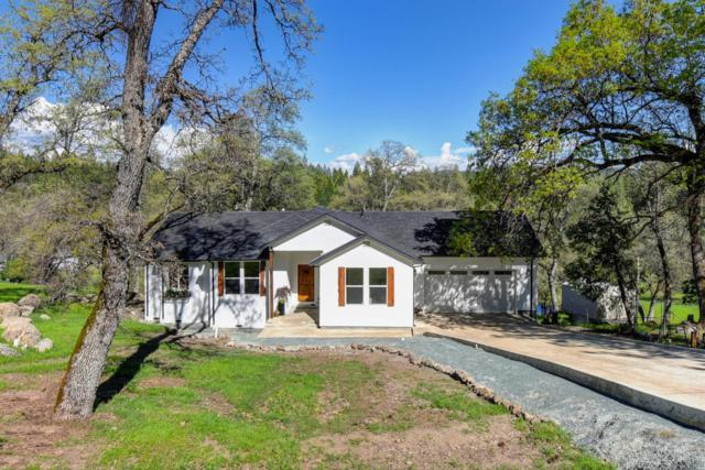 16542 Silver S. Drive, Pioneer, CA 95666 (MLS #19043533) :: The Del Real Group