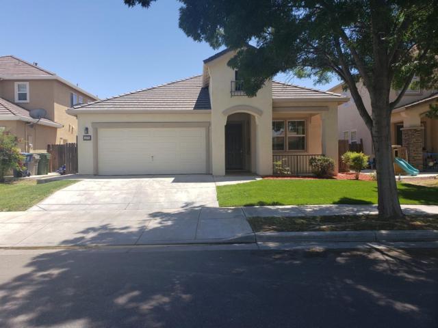 1171 Oatgrass Way, Los Banos, CA 93635 (MLS #19043743) :: The Del Real Group