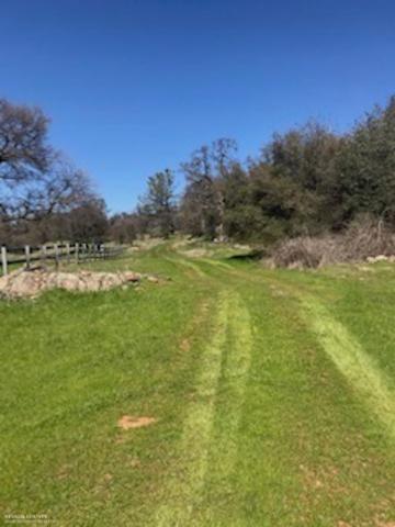 13870 Garden Bar Road, Grass Valley, CA 95949 (MLS #19043772) :: REMAX Executive