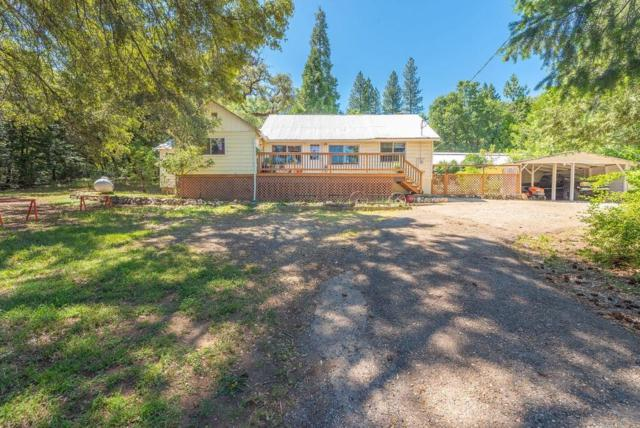 25259 State Highway 88, Pioneer, CA 95666 (MLS #19044141) :: The Del Real Group