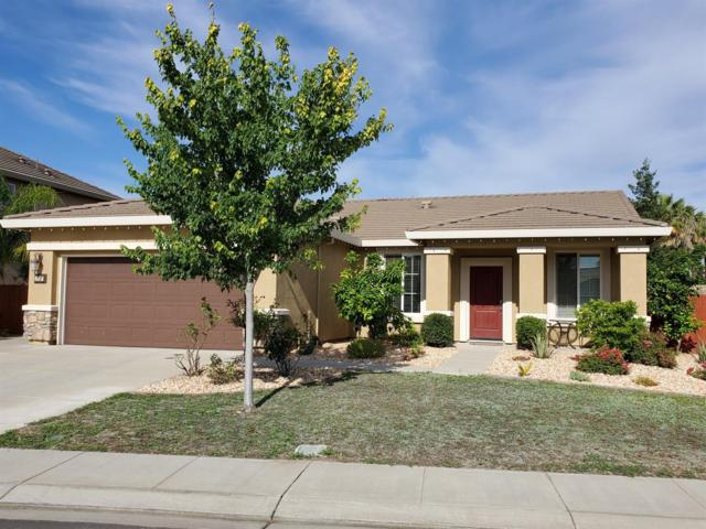 1737 Tickseed Lane, Manteca, CA 95337 (MLS #19044176) :: The Del Real Group