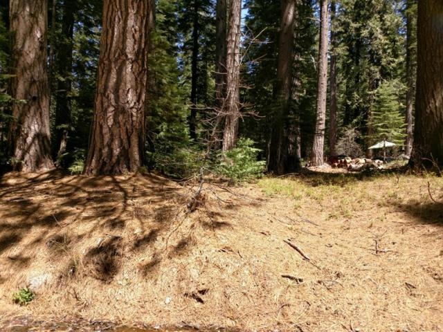 1 Blue Canyon Road, Emigrant Gap, CA 95715 (#19044372) :: Jimmy Castro Real Estate Group