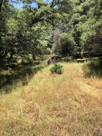 19444 Buck Ridge, Grass Valley, CA 95949 (MLS #19044380) :: Dominic Brandon and Team